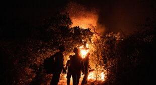 Pożary trawią Kalifornię (PAP/EPA/NEAL WATERS/ETIENNE LAURENT)