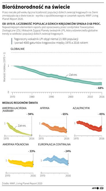Bioróżnorodność na świecie (PAP/AFP/Adam Ziemienowicz)